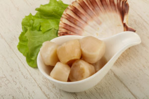 English lessons in Miami: scallops